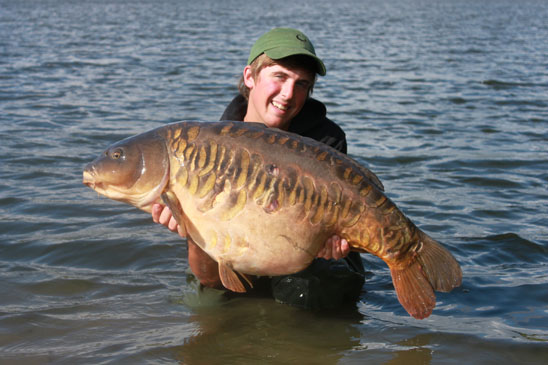 scaley mirror