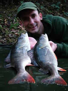 Brace of Perch